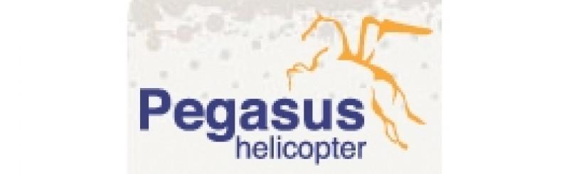 Pegasus Helicopter logotyp